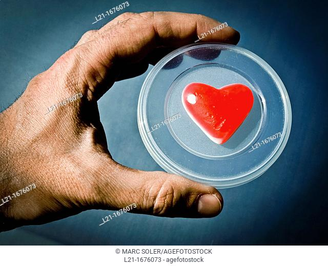 Hand holding red heart on a plastic cap