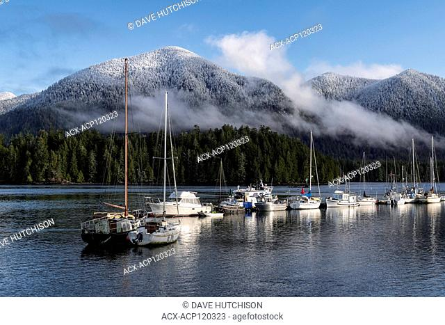 Meares Island, Tofino, Vancouver Island, BC Canada