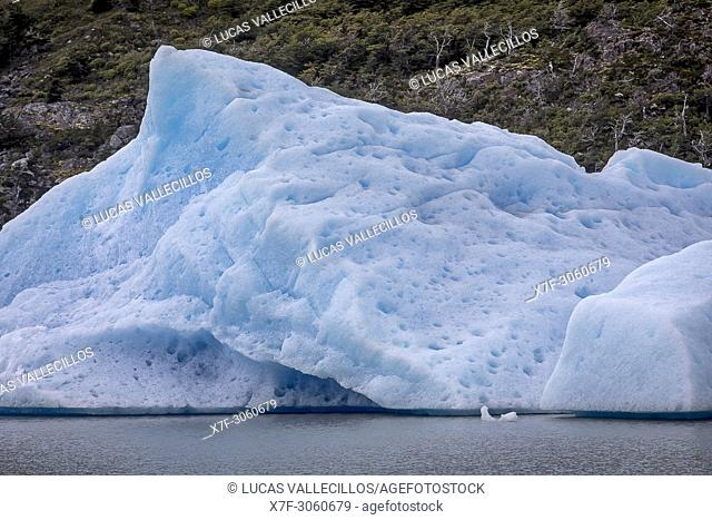 Grey Lake, iceberg detached from Grey Glacier, Torres del Paine national park, Patagonia, Chile