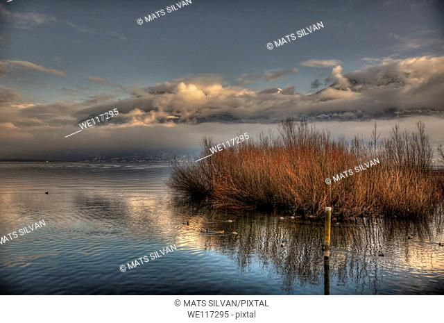 Lake with pampas grass and mountain with clouds