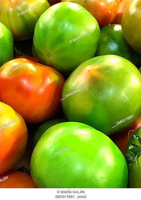 Red tomato among green tomatoes