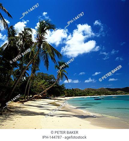 Grand Anse Beach - Beautiful palm fringed beach on the island of Grenada