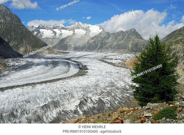 Switzerland, Alpa, Aletsch glacier