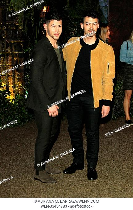 """""""Jumanji: Welcome to the Jungle"""" Premiere held at the TCL Chinese Theater in Los Angeles, California. Featuring: Nick Jonas, Joe Jonas Where: Los Angeles"""