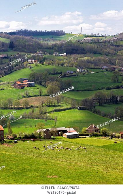 Bucolic landscape with hilly pastures, farmhouses and cows grazing in Midi-Pyrenees region of France