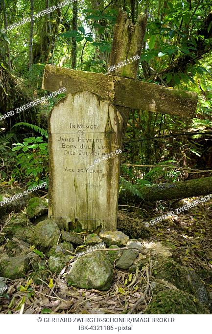 Weathered wooden cross and grave stone standing in an old settlers graveyard in a dense forest, Jackson Bay, West coast, South Island, New Zealand