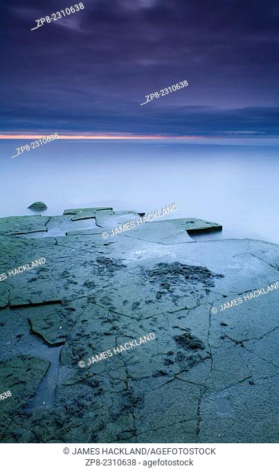 Exposed rock covered in Cyanobacteria (blue-green algae) on Lake Ontario, Oakville, Ontario, Canada