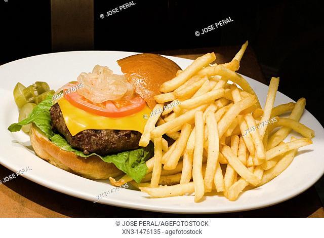 Cheeseburger and Fries on a Plate, Soho, New York City, USA