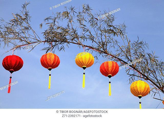 Vietnam, Hoi An, Lanterns hanging on branch
