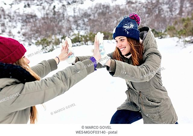 Two best friends playfighting in the snow