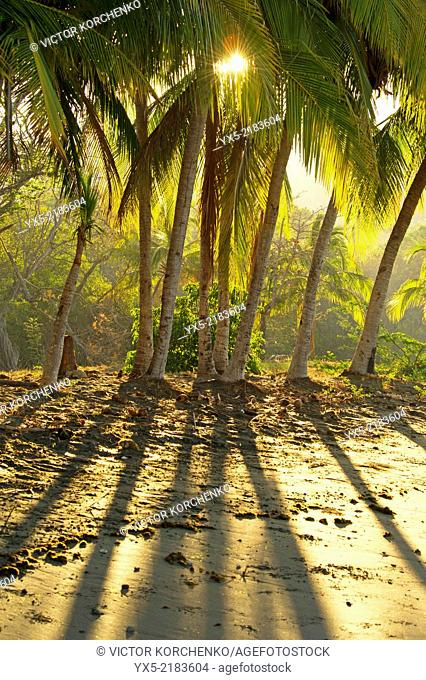 Sunrise on a black sand beach at Papagayo Bay