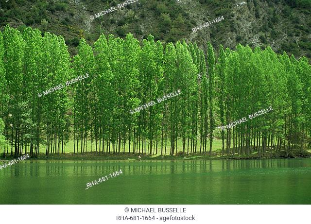 Landscape of trees and river in the Bidasoa Valley, Navarra, Spain, Europe