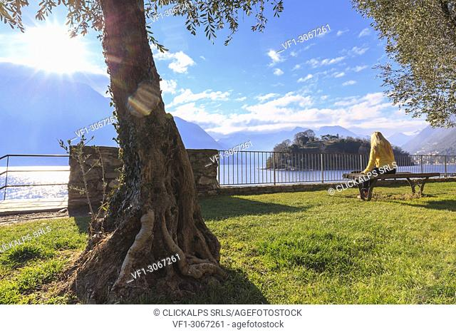 A girl ditting on a bench in front of the Comacina Island, Ossuccio, Como Lake, Lombardy, Italy, Europe