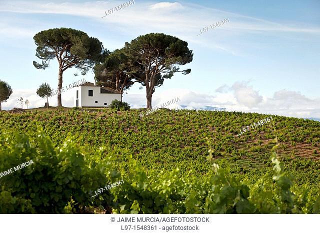Small white building on a hill amongst pine trees along the Camino de Santiago near the village of Villafranca del Bierzo