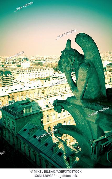Gargoyle figure  Notre Dame Cathedral  Paris, France, Europe
