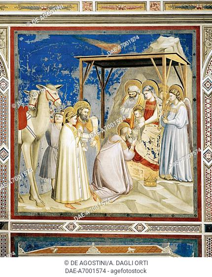 Adoration of the Magi, by Giotto (1267-1337), detail from the cycle of frescoes Life and Passion of Christ, 1303-1305, after the restoration in 2002
