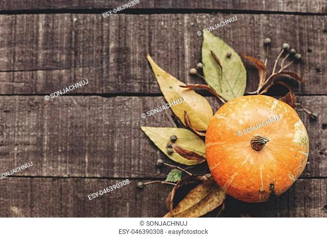 fall photo, beautiful pumpkin with leaves and berries on rustic wooden background, top view. space for text. thanksgiving or halloween concept greeting card...