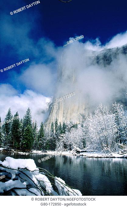 Yosemite National Park. California. USA