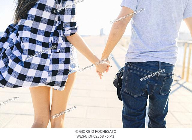 Young couple holding hands, rear view