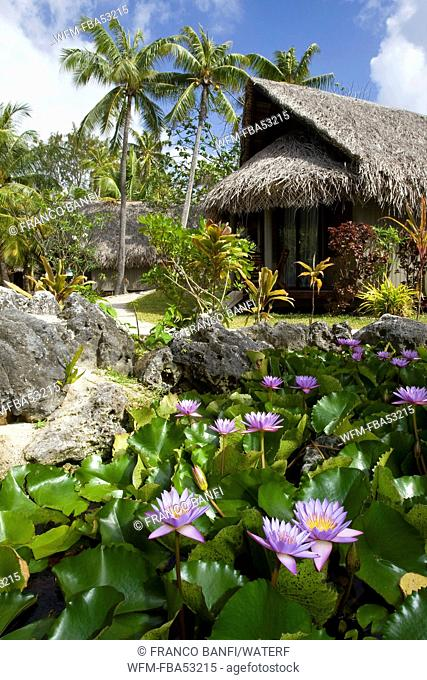 Garden at Novotel Rangiroa Lagoon Resort, Rangiroa, French Polynesia