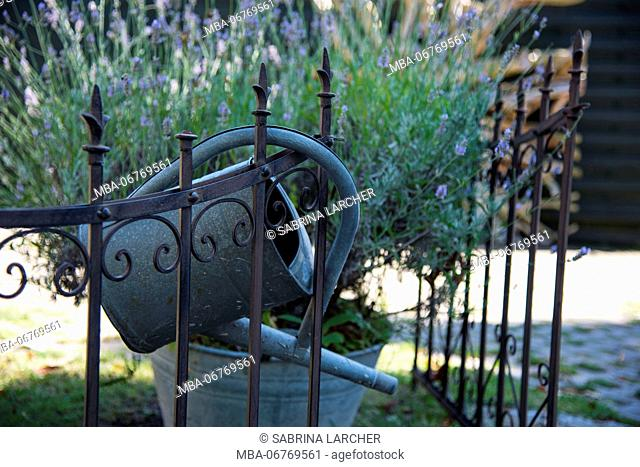 Europe, Germany, Mecklenburg Western Pomerania, the Baltic Sea, Fischland Darss Zingst, garden fence close watering can