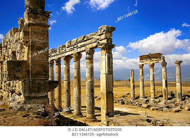 Syria, Apamea, columns of the citadel. Back, Qa'allat Al-Medik