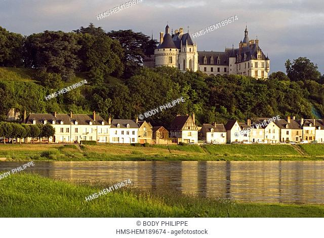 France, Loir et Cher, Loire Valley listed as World Heritage by UNESCO, Chaumont sur Loire, castle with Medieval and Renaissance Style