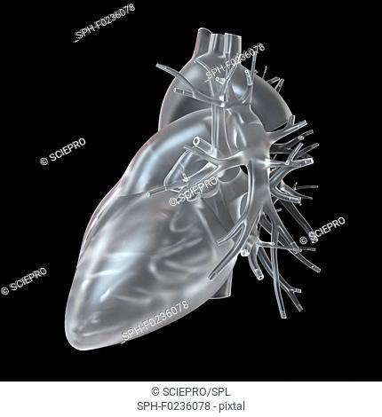 Illustration of glass heart