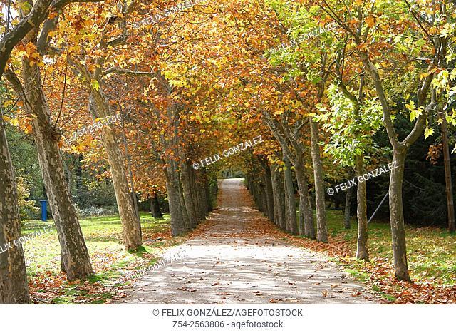Autumn at San Lorenzo del Escorial, Madrid, Spain