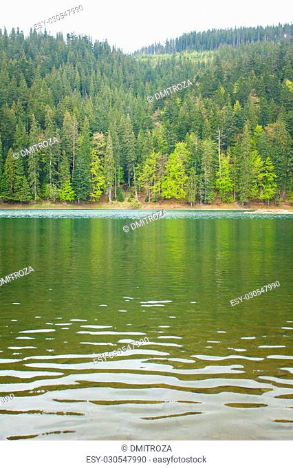 Amazing view of summer landscape with clear lake and forest around it