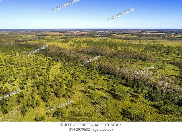 Florida, Kenansville, Lake Marian Highlands, Three Lakes Wildlife Management Area, aerial overhead bird's eye view above