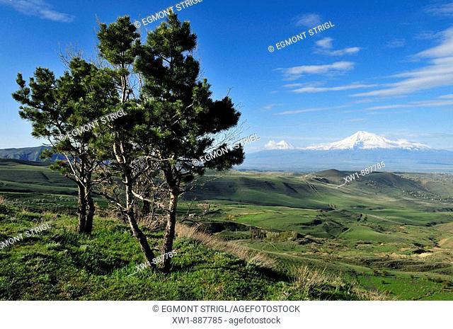 view over the Araratian Plain towards Mount Ararat, Armenia, Asia