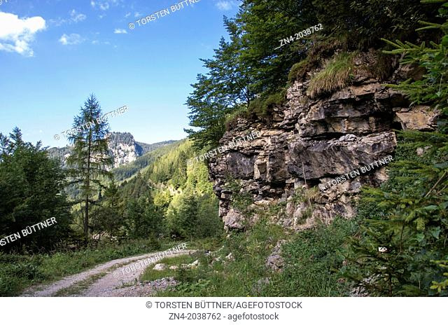 Hiking Trail in Eastern Limestone Alp Region. Kalkalpen National Park. Austria