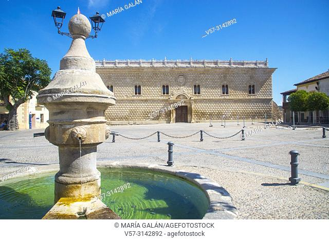 Fountain and Ducal Palace. Plaza Mayor, Cogolludo, Guadalajara province, Castilla La Mancha, Spain