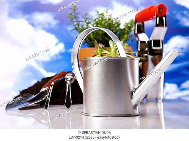 Watering Can And Gardening Tool