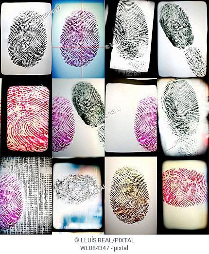 Fingerprint - Huella digital