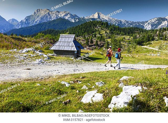 Mountains in summer, tourists and huts. Velika Planina sky area. Upper Carniola region. Slovenia, Europe