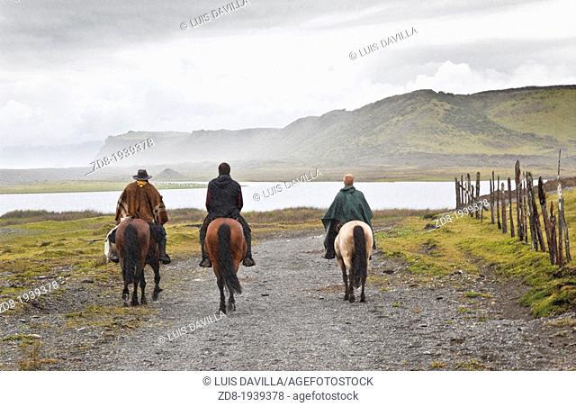 rahue in chiloe national park