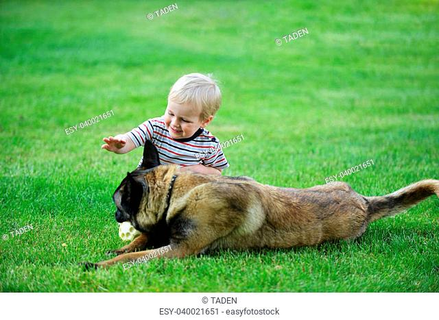 little boy playing with dog on grass