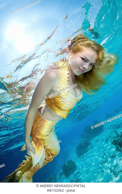 Golden-haired mermaid swims under the water, Indian Ocean, Maldives