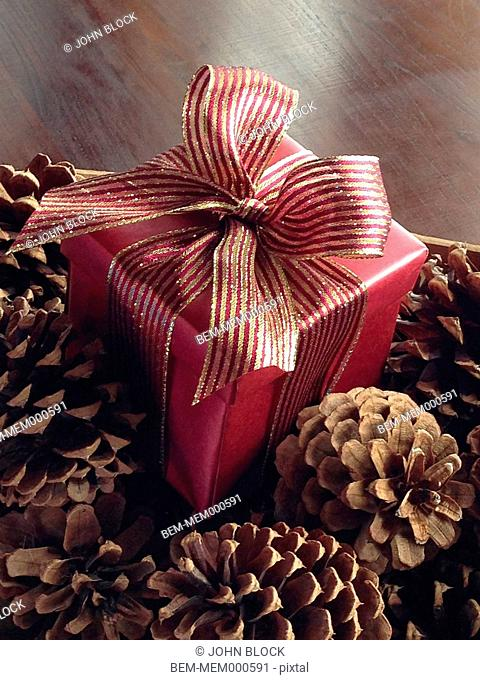 Christmas present with pine cones