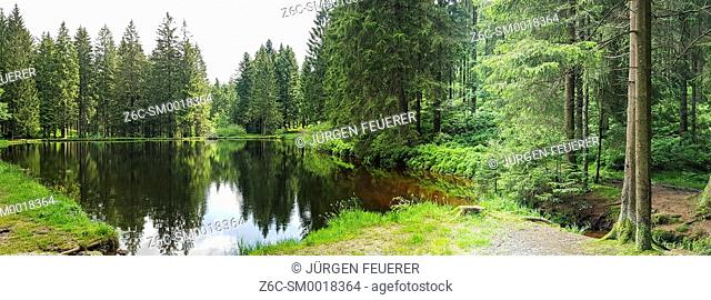 lake Sandsee, commune of Herrenwies and Forbach and next to the road of Black Forest and landmark Sand or Buehler Hoehe, Germany