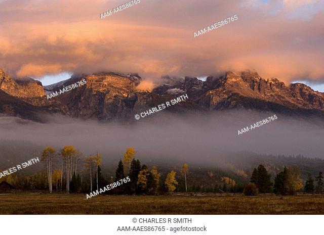 Fall colors at sunrise, Grand Teton National Park, Wyoming 10/5/06 fog, mist