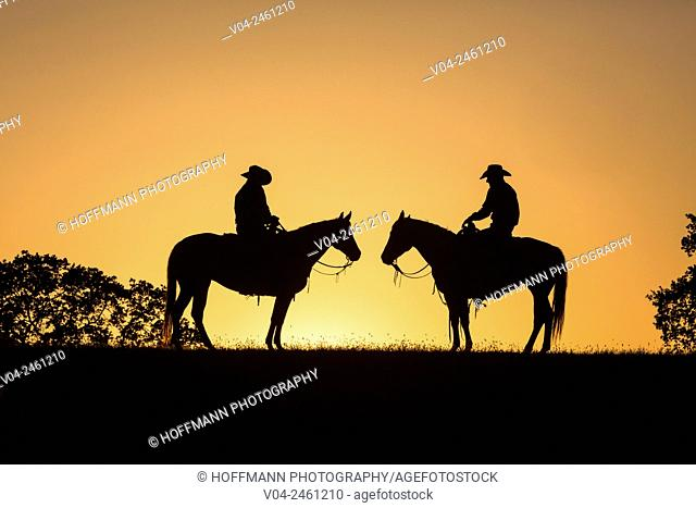 Two wranglers (cowboys) on horses at sunset, California, USA