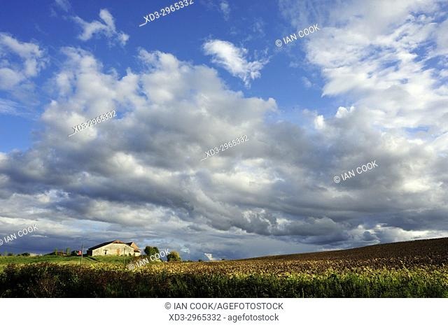 farm near Lauzun, Lot-et-Garonne Department, New Aquitaine, France