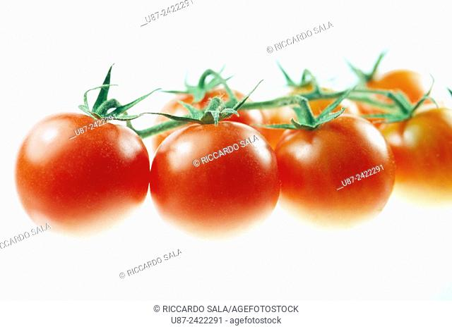 Cherry Tomatoes Isolated on a White Background. . .