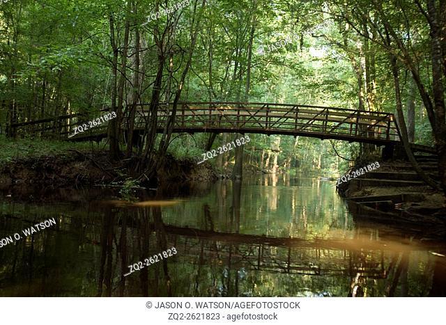 "Pedestrian bridge """"L"""" crosses Cedar Creek as part of the Kingsnake trail, Congaree National Park, near Columbia, South Carolina on August 6, 2008"