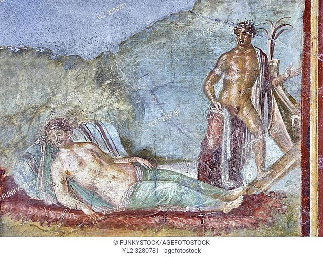 Roman fresco wall painting of Ariadne fast asleep on a bed of seaweed does not realise that Theseus is about to abandon her and sailaway on a ship to Athens