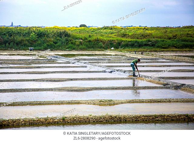 Lined up salt harvesting farms where we can see a worker racking the salt out of the water in Guerande the Famous Bretagne, Brittany sea salt get made there