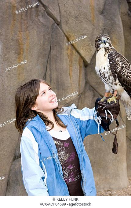 A young girl learns about raptors while holding a Red Tailed Hawk near Kamloops, British Columbia, Canada